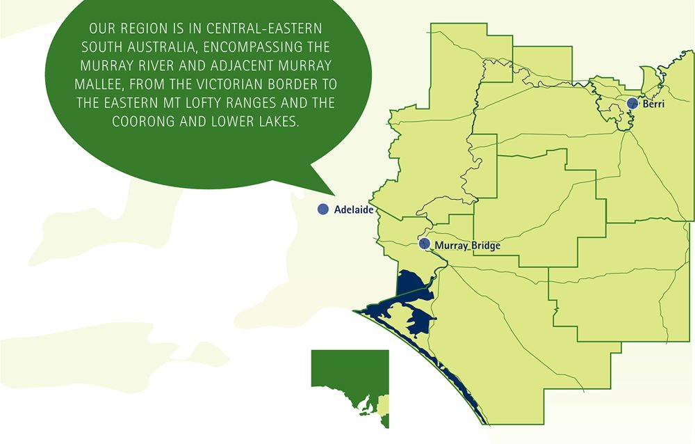 RDA Murraylands & Riverland Region Map